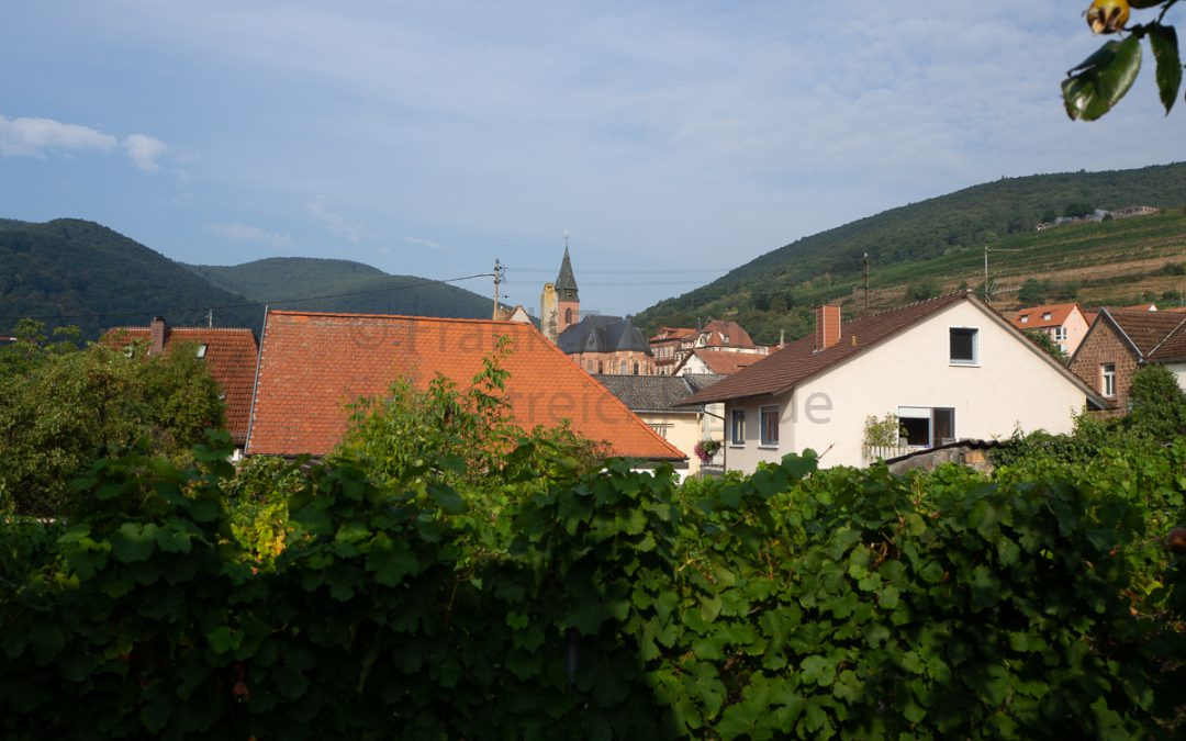Sankt Martin – Wein & Natur