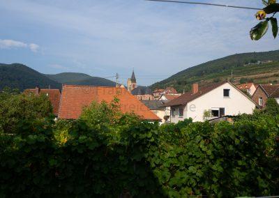 dieses Foto zeigt den Blick vom Stellplatz am Weingut Schreieck